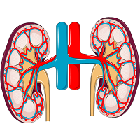 Kidneys_lead_image_200x200